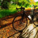 What Is A Good Road Bike For Beginners?