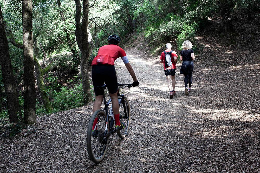 Which Is Better Walking Or Biking?